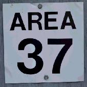 Amidon37